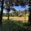 Öppning av Skogsbanan 18 hål